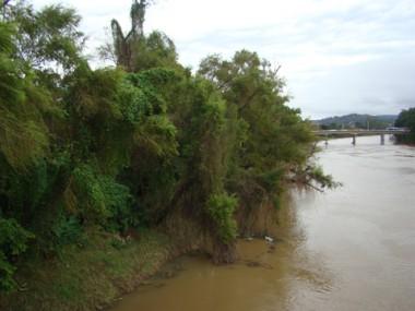 Outras árvores podem ser cortadas. Mas a Fatma e prefeitura foram condenadas por podas anteriores.