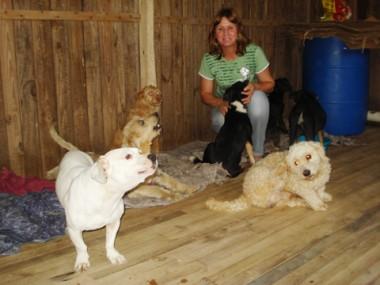 A presidenta da Associação Esperança Animais, Tani Niehues Felipe, com os cães que são cuidados por ela.