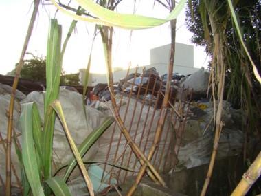 Casa na beira-rio funciona como empresa de triagem de lixo e pertuba vizinhos.
