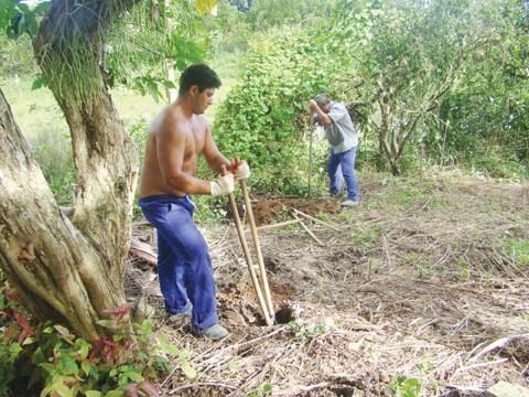 Funcionários trabalham para colocar a cerca no pátio da estrebaria.