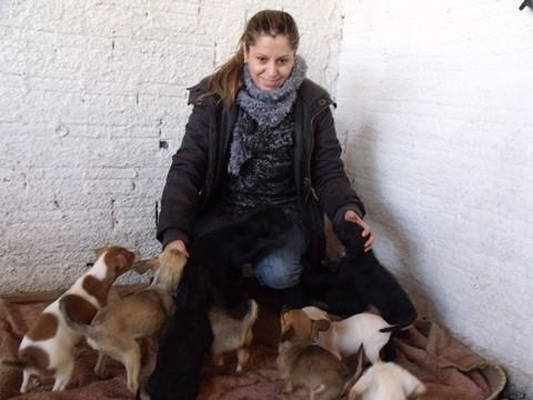 A veterinária do Centro de Controle de Zoonoses em Tubarão, Carla Jovania Pereira, cuidou com muito carinho dos filhotes que serão levados para a feira