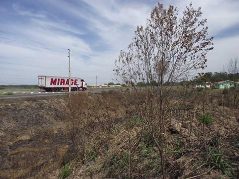 Uma das últimas queimadas às margens da BR-101, ocorreu em Jaguaruna. A vegetação nos bordos de pista garante a qualidade da obra de duplicação, pois auxilia que não ocorra erosão de solo  -  Foto:Arquivo Esga-Dnit/Divulgação/Notisul