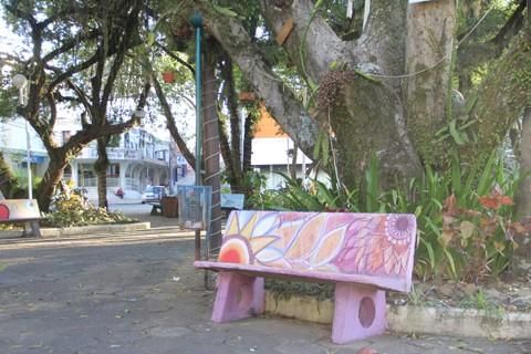 Praça no centro da Cidade Azul ficou mais colorida nos últimos dias  -  Foto:Jailson Vieira/Notisul