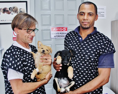 Profissionais do Projeto Castração trabalham com amor a cada cão e gato que chega no local  - Fotos: Rafael Andrade/Notisul
