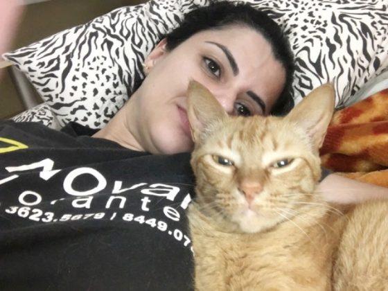 Aumigos, o destaque desta semana é a Honda, uma gatinha linda sem raça definida. Sua mamãe, Gabriela Bonifácio, me contou que ela adora brincar com bolinha e com o arranhador. Fofuras essas duas. - Foto: Divulgação/Notisul