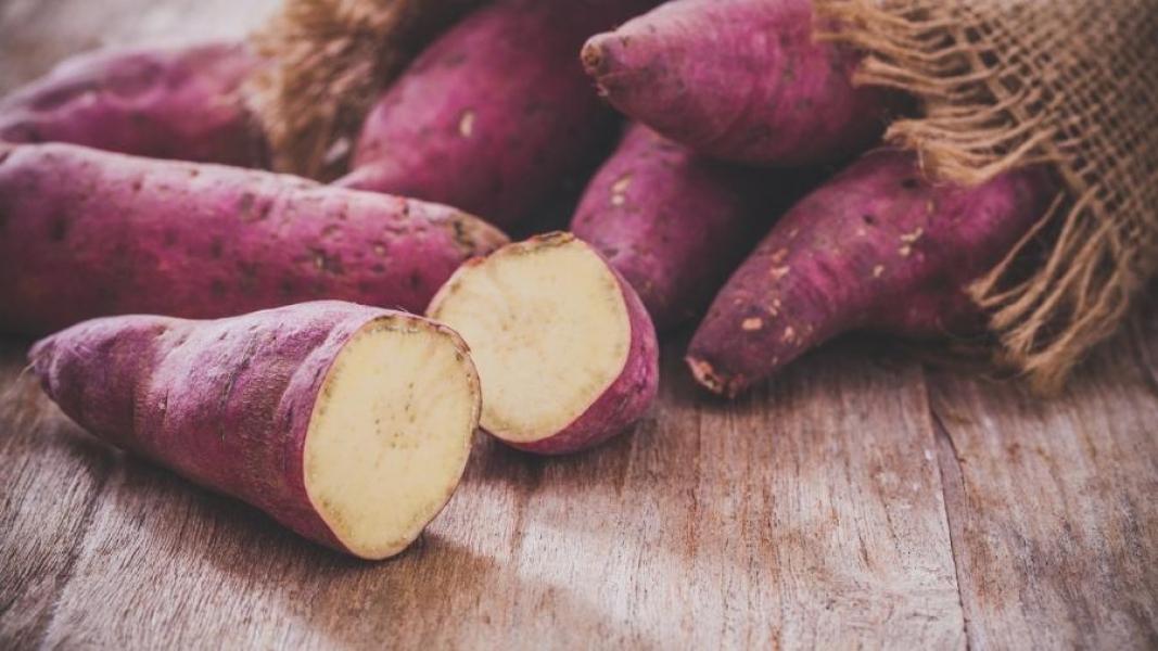 Batata-doce ajuda a emagrecer? Entenda os benefícios desse alimento -  Notisul