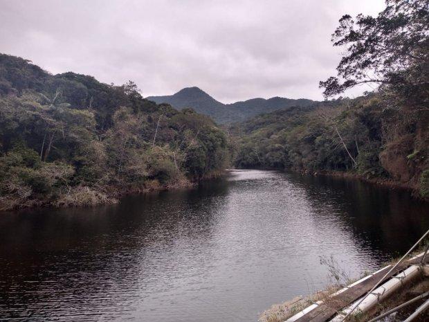 #Pracegover Foto: Na imagem há um rio e muitas árvores ao redor