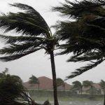#Pracegover Foto: na imagem há ventos fortes balançando árvores e chuva
