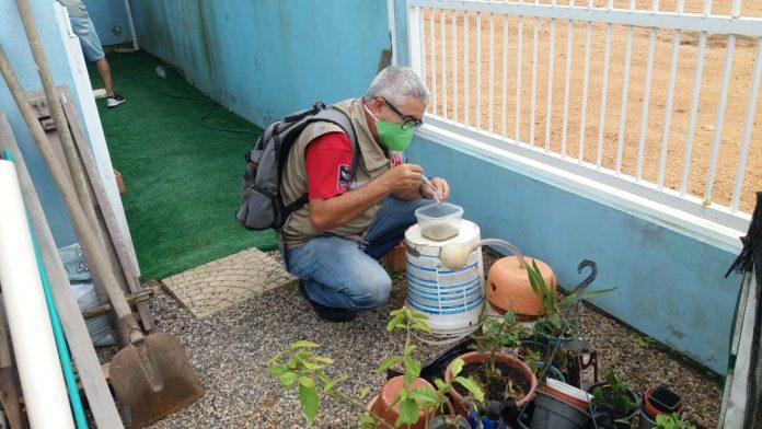 #Pracegover Foto: na imagem há um homem analisando focos de Aedes aegypti