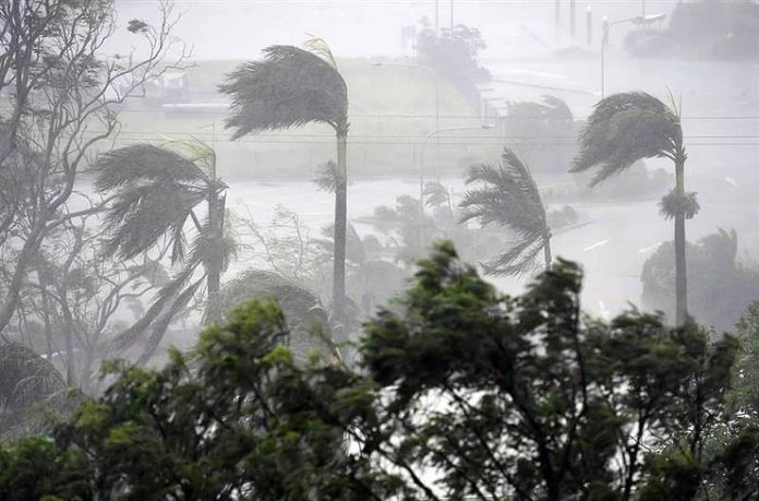 #Pracegover Na foto, queda de chuva e ventos fortes balançando árvores