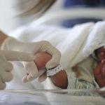 Na foto, um bebê recém-nascido dentro de uma incubadora