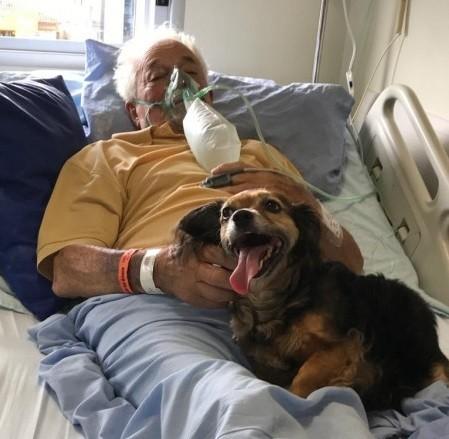 #Pracegover Foto: na imagem há um idoso na cama hospitalar e um cãozinho