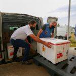 #Pracegover Na foto, profissionais carregando vacinas em caixas de isopor