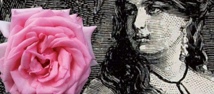 #Pracegover Foto: na imagem há uma mulher e uma rosa