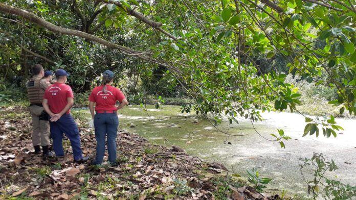#Pracegover Foto: na imagem há profissionais do Corpo de Bombeiros e policiais, uma árvore e uma piscina desativada