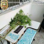 #pracegover Na foto, as drogas apreendidas durante a operação