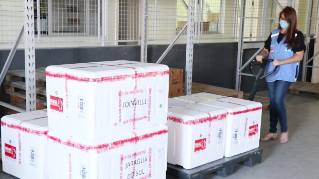 #Pracegover Na foto, caixas de isopor com as vacinas a serem distribuídas