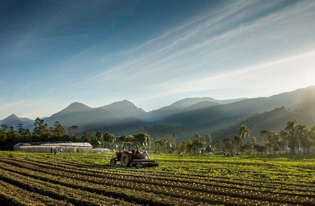 #Pracegover Foto: na imagem há um terreno, uma máquina agrícola e um homem