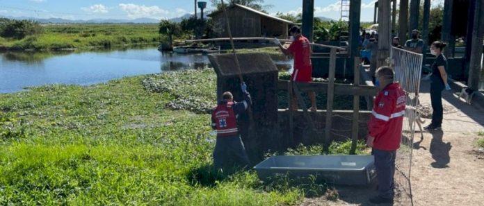 #pracegover Na foto, Bombeiros resgatam corpo em um rio