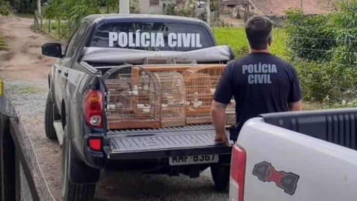 #pracegover Na foto, uma viatura da Polícia Civil com várias gaiolas