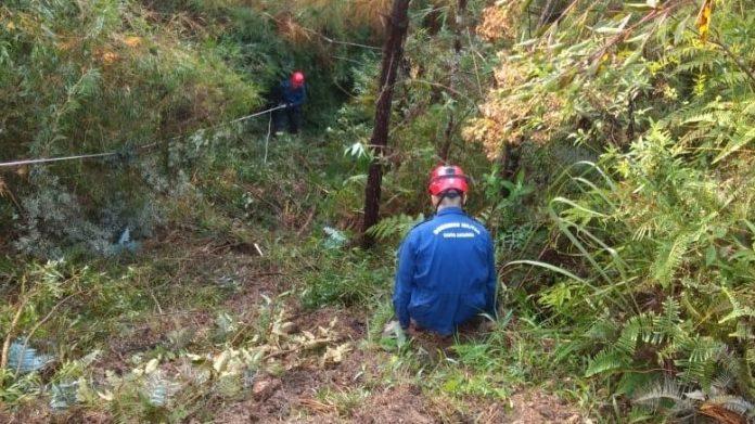 #Pracegover Na foto, bombeiros fazendo resgate em um barranco coberto por mato e árvores