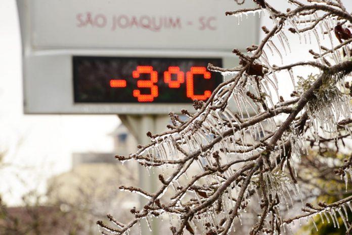 #Pracegover Foto: na imagem há uma árvore congelada e um termômetro