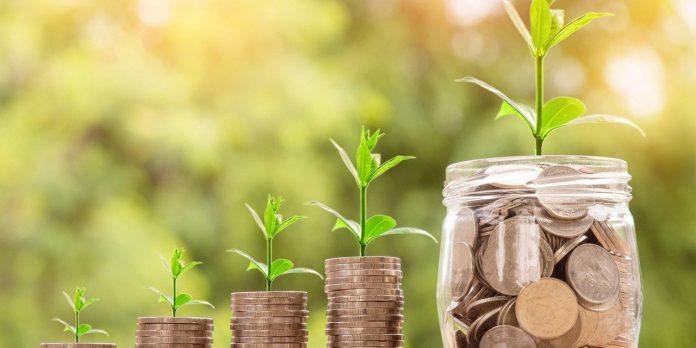 #Pracegover Foto: na imagem há plantas e moedas