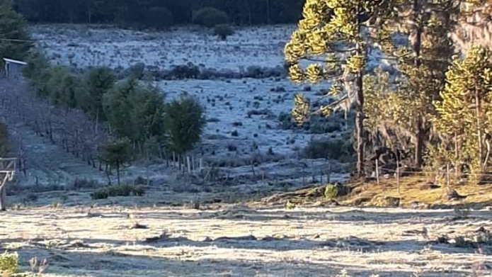 #Pracegover Na foto, paisagem serrana coberta pela geada