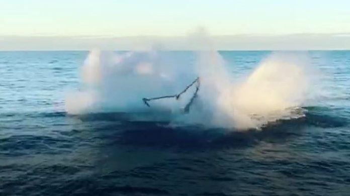 #Pracegover Na foto, calda da baleia depois de um salto