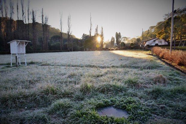 #Pracegover Foto: na imagem há uma área verde tomada pela geada
