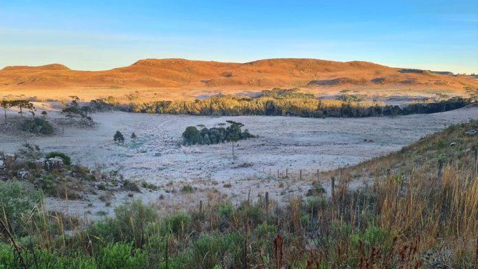 #Pracegover Foto: na imagem há uma área verde e a geada sobre o local