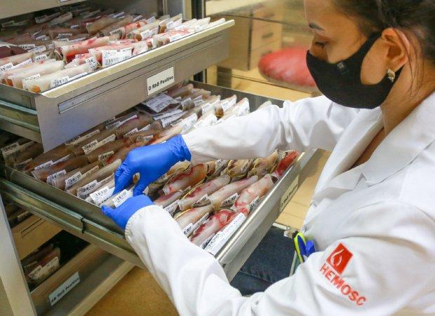 #Pracegover Foto: na imagem há uma mulher e muitas bolsas de sangue
