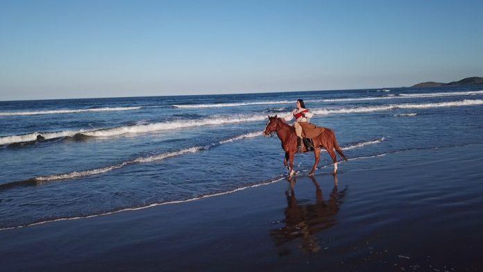 #Pracegover foto: na imagem há uma mulher, um cavalo e praia