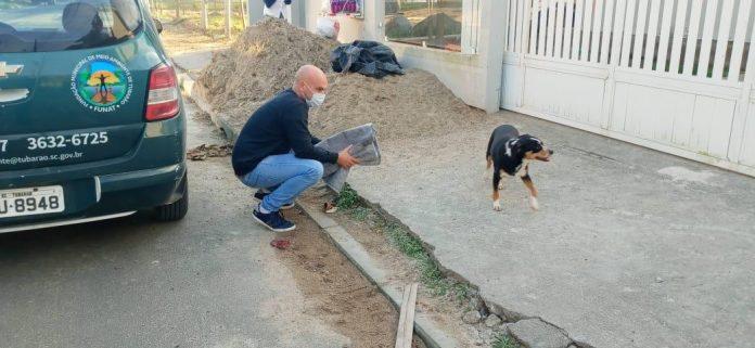 #Pracegover Foto: na imagem há um homem, um cão, carro e material de construção