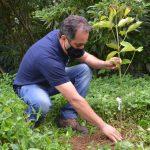 #Pracegover foto: na imagem há um homem plantando uma árvore
