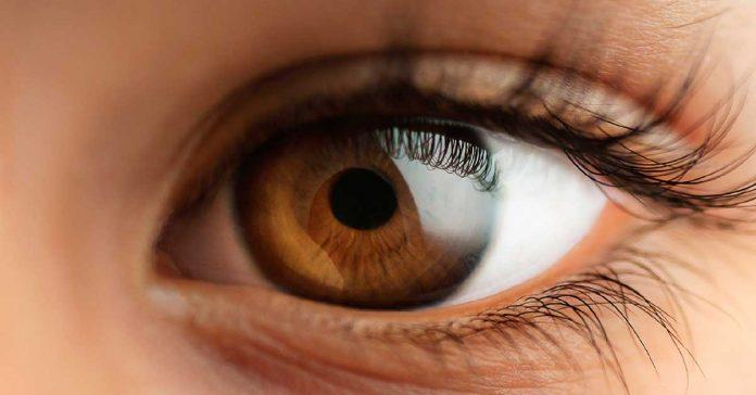 #Pracegover foto: na imagem há um olho