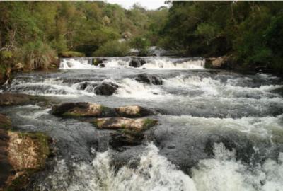 #Pracegover foto: na imagem há um rio, pedras e árvores
