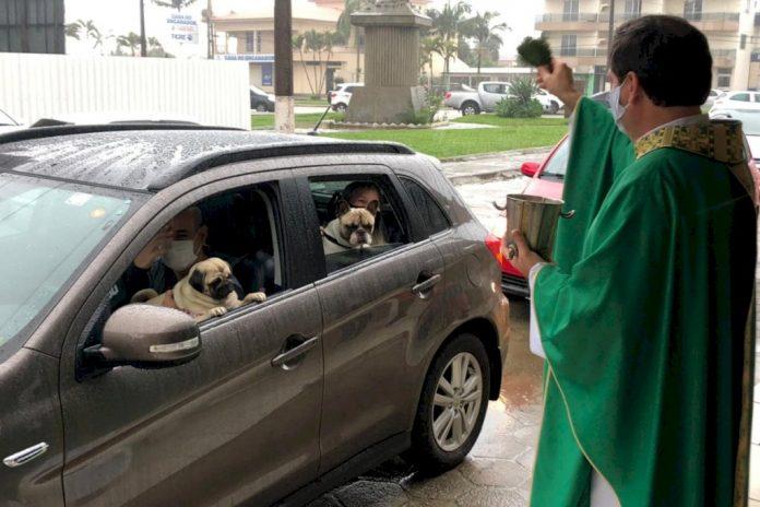 #Prcegover foto: na imagem há pessoas, animais e um veículo