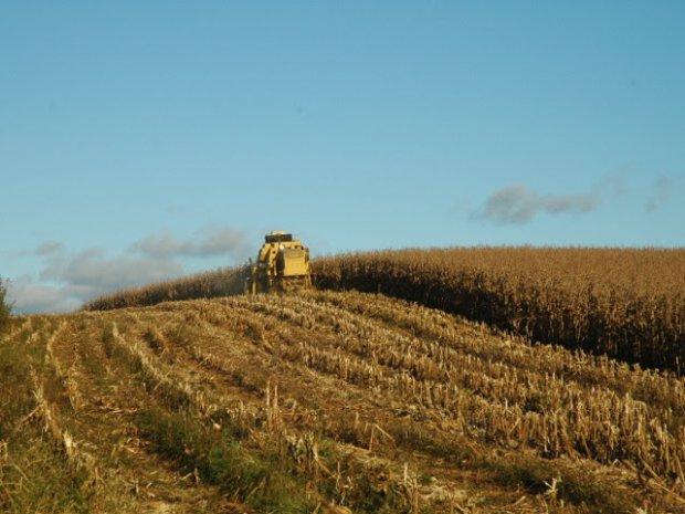 #Pracegover foto: na imagem há uma plantação e uma máquina