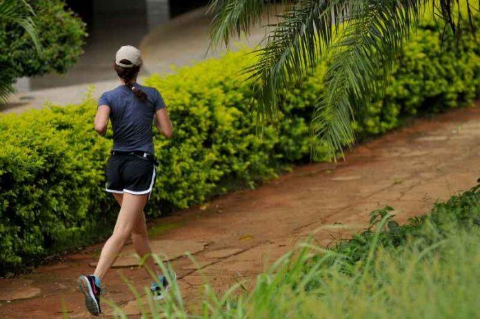 #Pracegover foto: na imagem há uma mulher, uma via e área verde